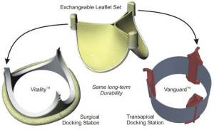 Serviceable Heart Valve